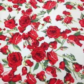 Cotton spandex print