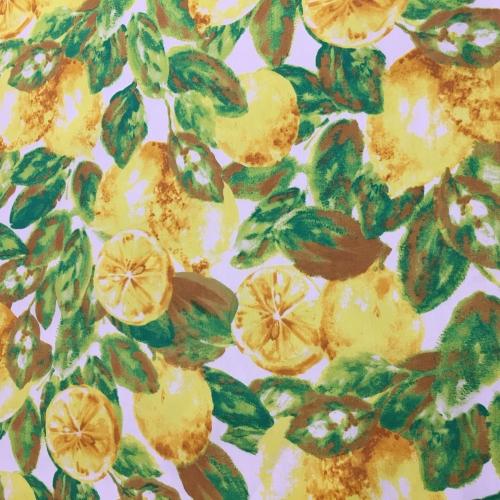 R4 lemons 1